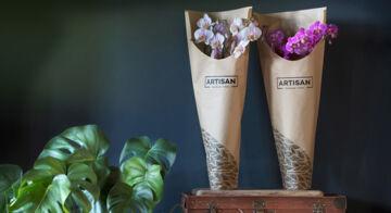 Artisan-orchids